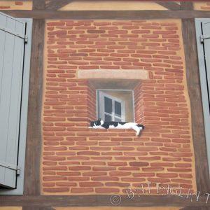 Fenêtre au chat en trompe l'œil